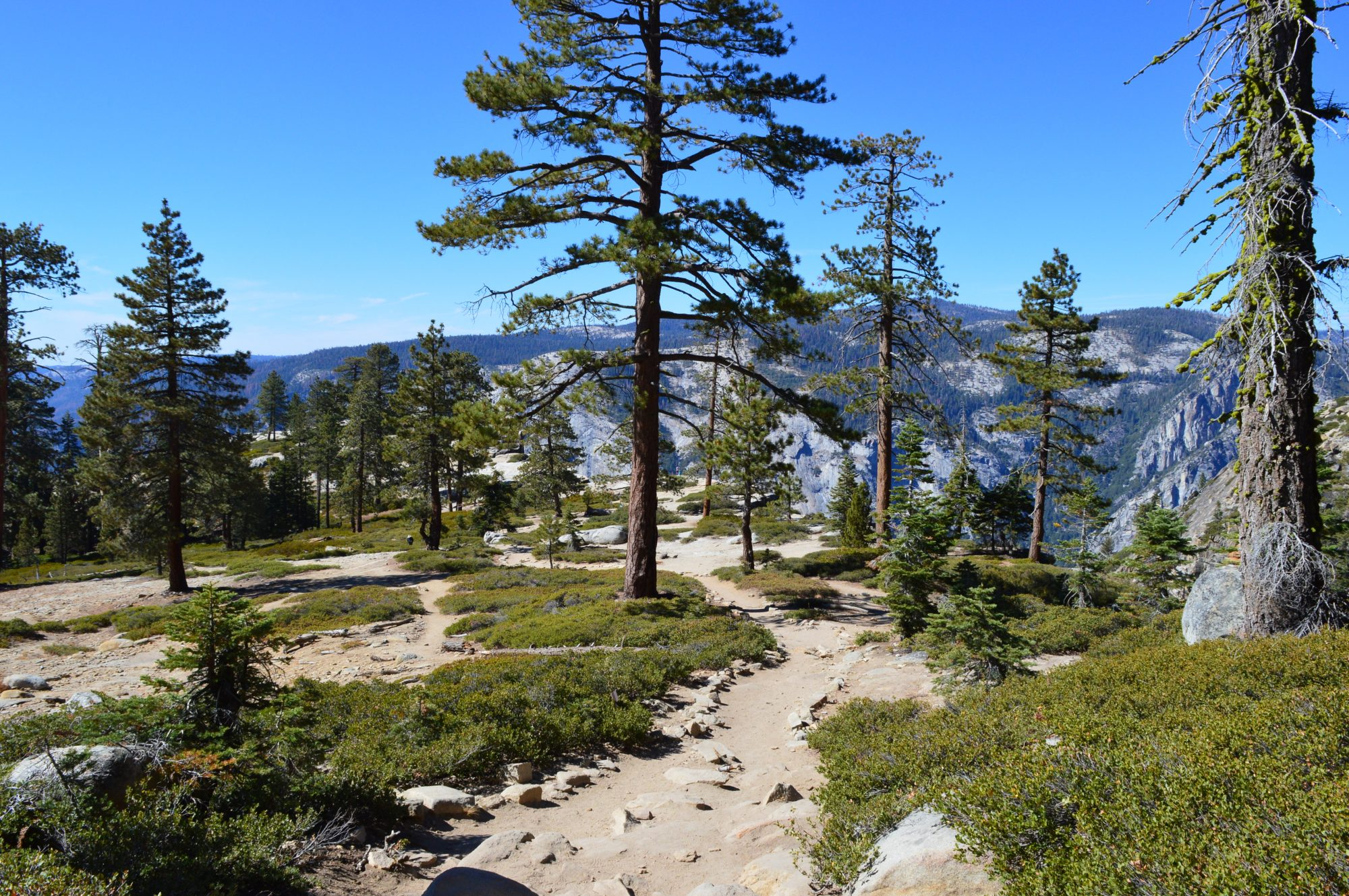 Taft Point Trail Yosemite National Park