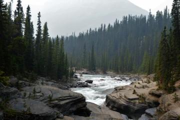 Mistaya Canyon Banff National Park