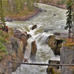 Experiencing The Powerful Sunwapta Falls In Jasper National Park