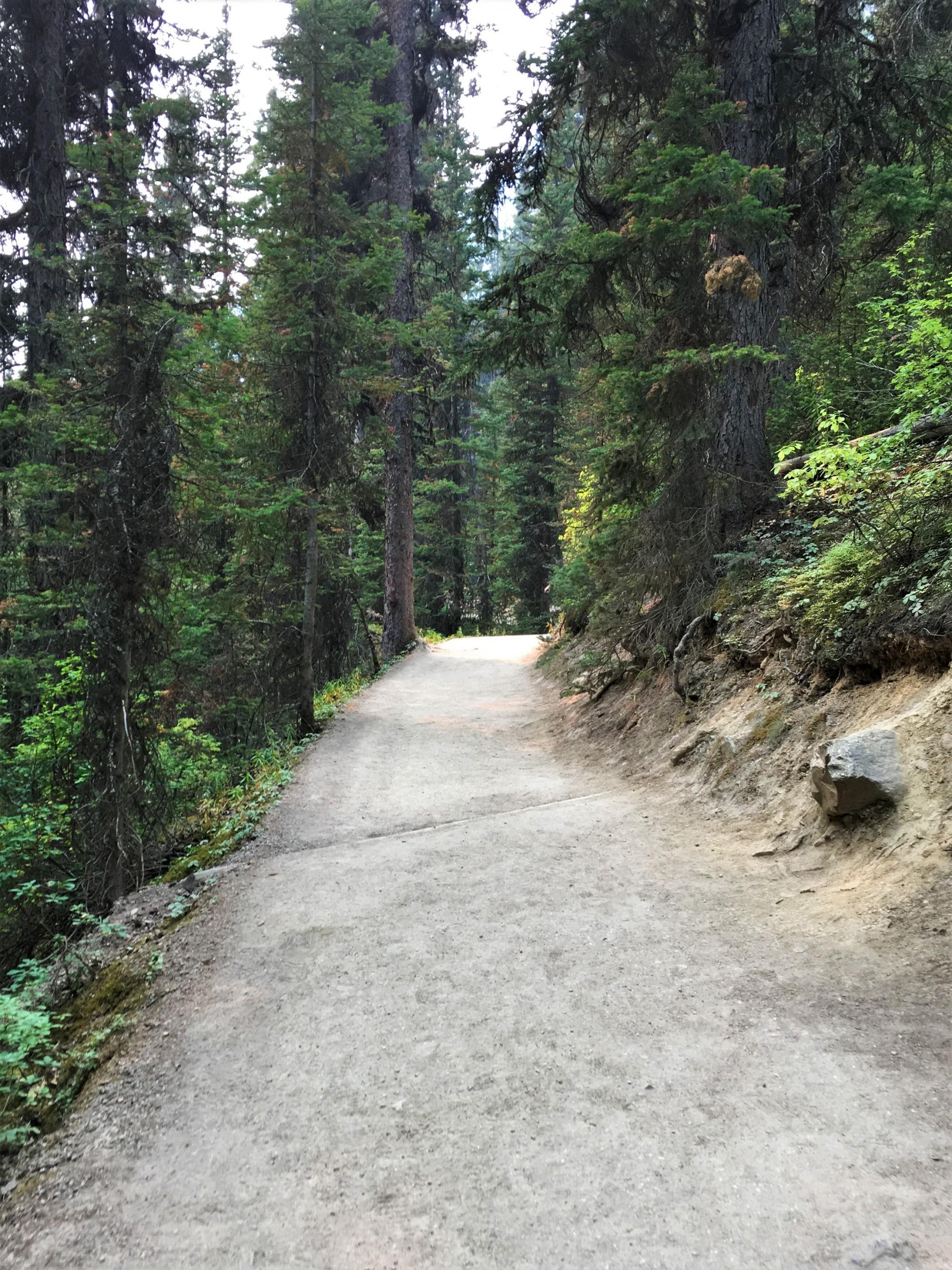 Lake Agnes Tea House Trail