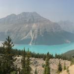 Visiting The Beautifully Blue Peyto Lake In Banff National Park