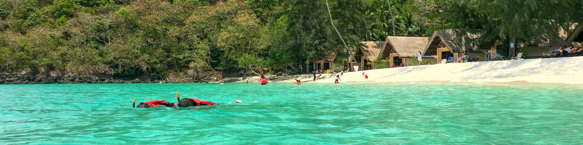 Surin Islands Snorkelling Review Seastar Ambition Earth