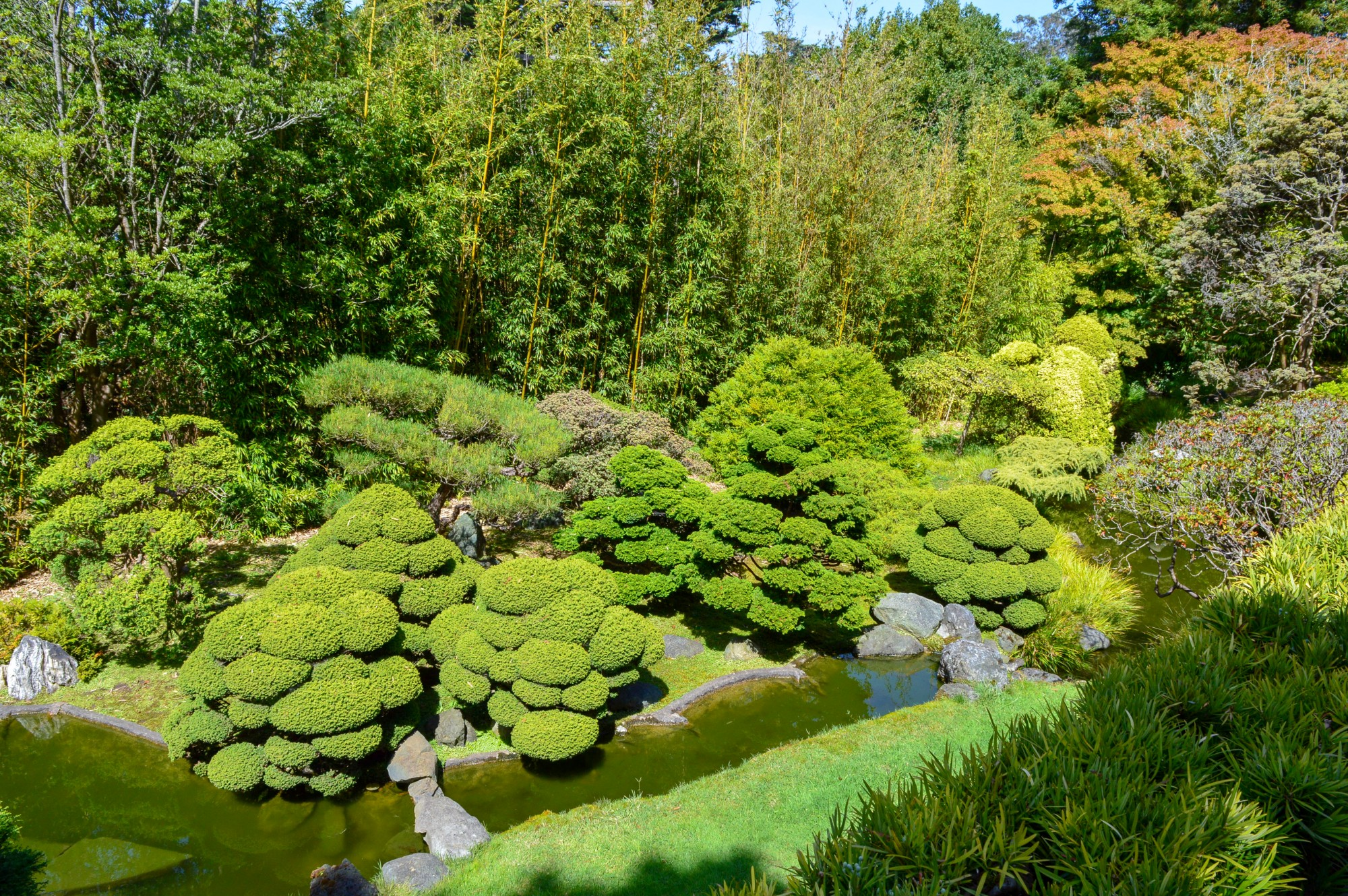 Japanese Garden in the Golden Gate Park, San Francisco