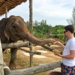 The Seaside Retreat Elephant Feeding, Khao Lak, Thailand