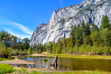 El Capitan Meadow