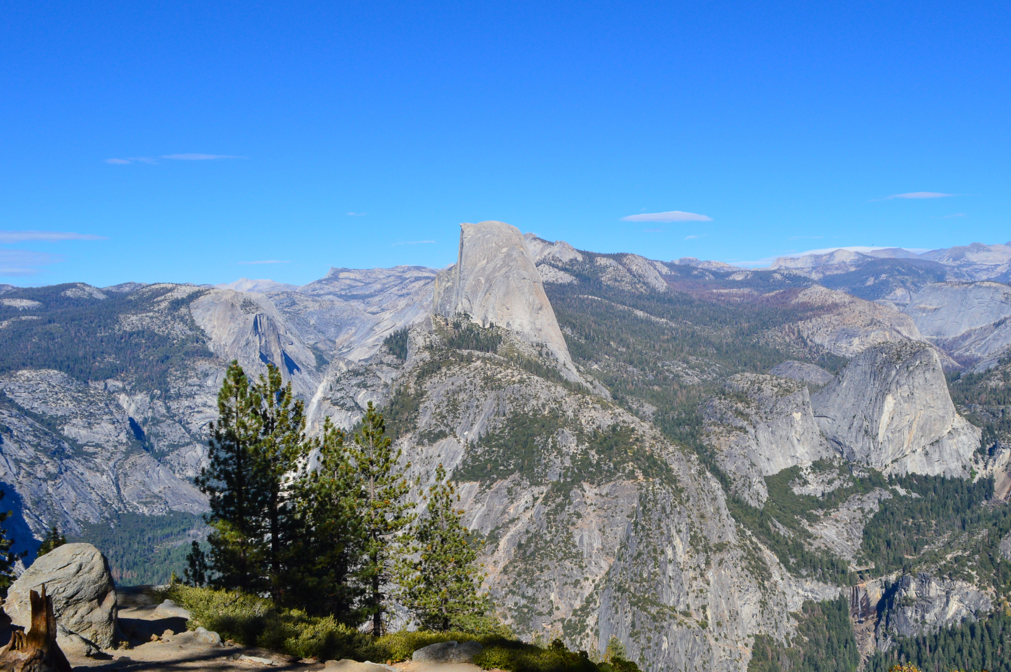 Half Dome from Washburn Point