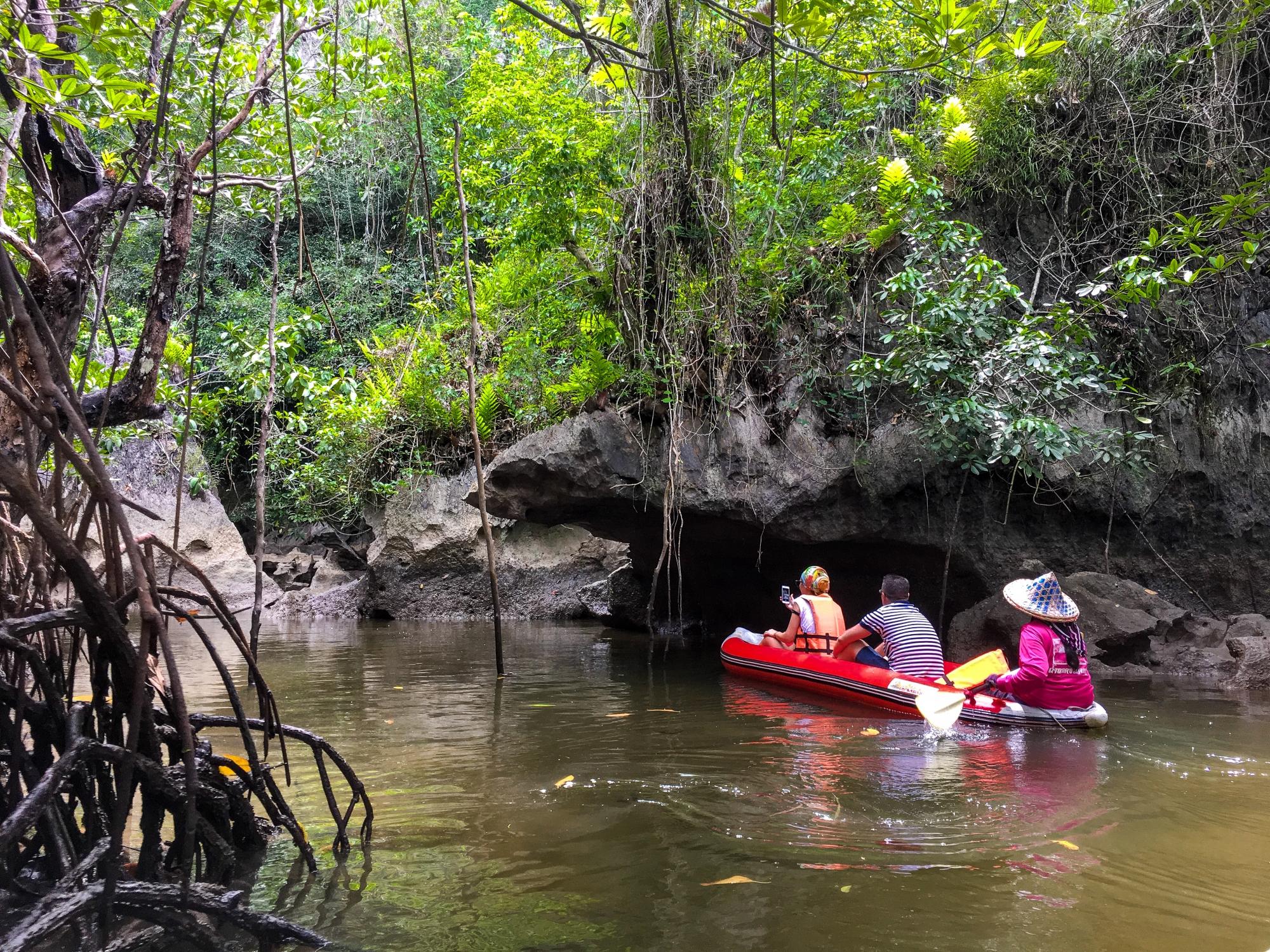 The Mangrove Swamp And Mangrove Cave In Phang Nga Bay