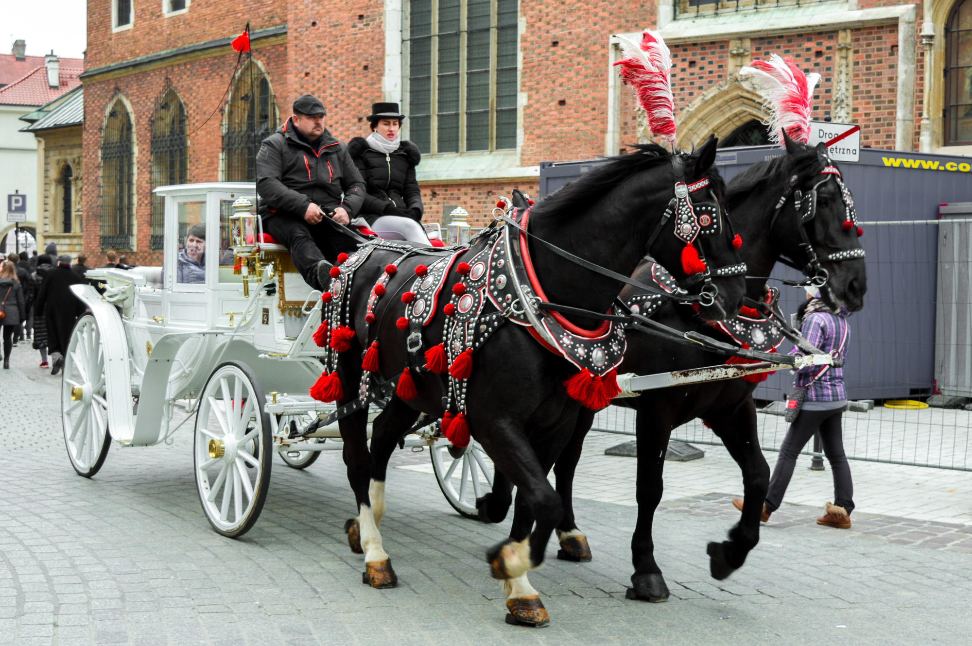 Horse and cart rides in Main Square, Krakow